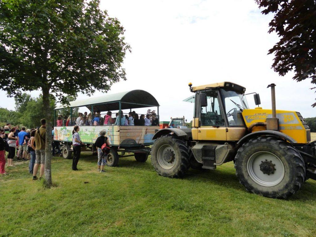 Balade tracteur remorque champ ferme animaux animations activités nature famille enfants ludique récréatif