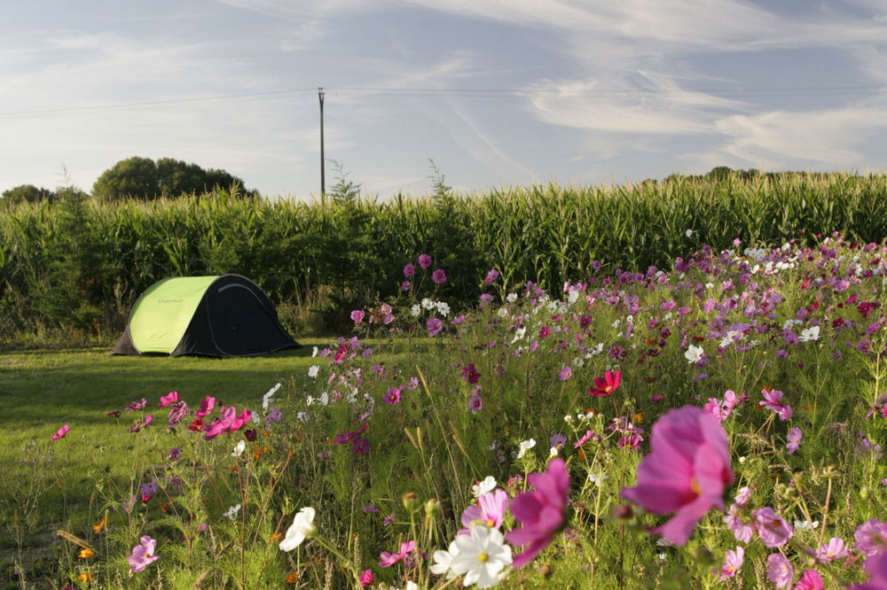 emplacement camping prunay
