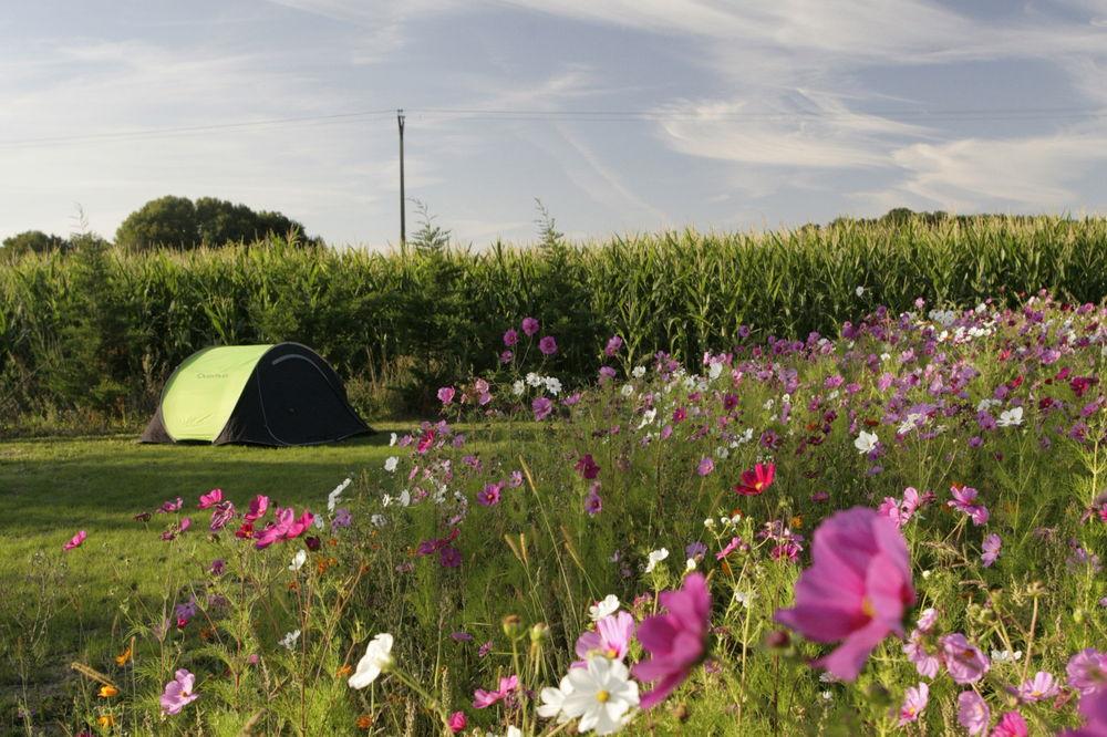 Camping ferme p dagogique de prunay loir et for Camping au jardin de la ferme