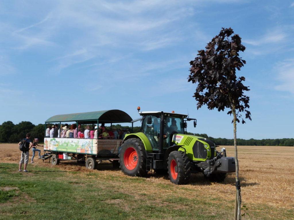 tracteur remorque ferme pedagogique Val de loire 41 prunay