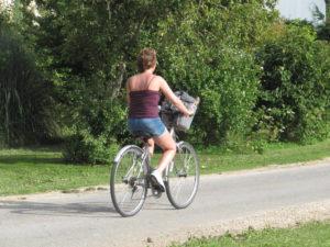 location vélo nature loire a velo camping piscine randonnée